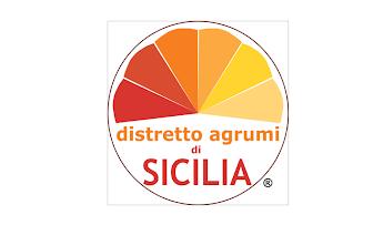 Vai all'organizzazione Distretto Agrumi - Attività Produttive