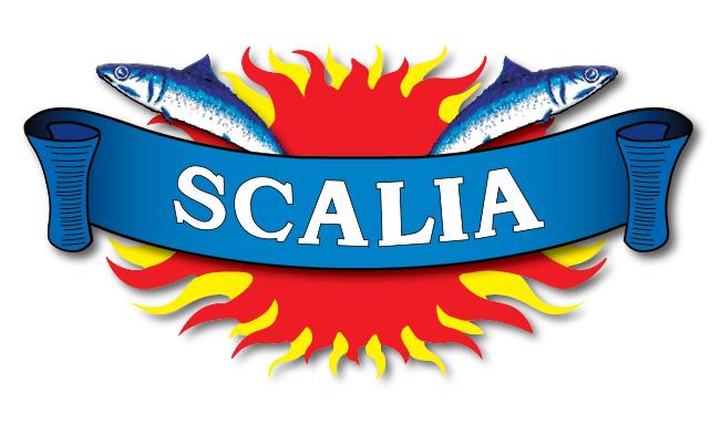 Vai all'organizzazione Benedetto Scalia S.r.l